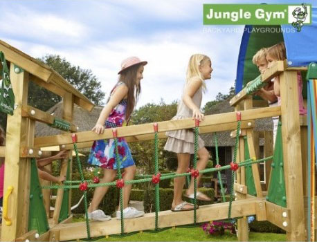 Jungle Gym - Net Link